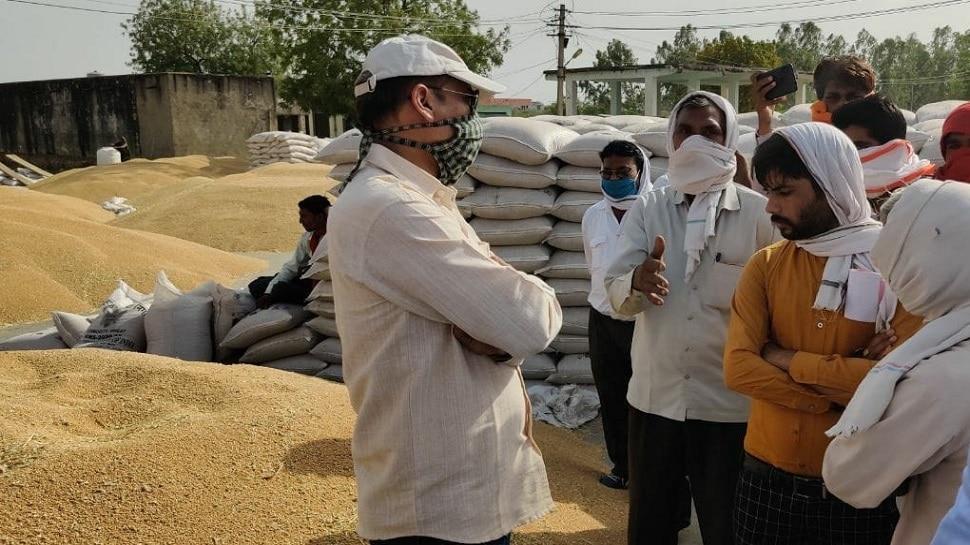 Rajasthan : 37 दिन में न्यूनतम समर्थन मूल्य पर साढ़े 10 लाख मैट्रिक टन गेहूं की खरीद