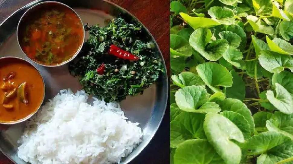 Vegetarian diet prevents infection
