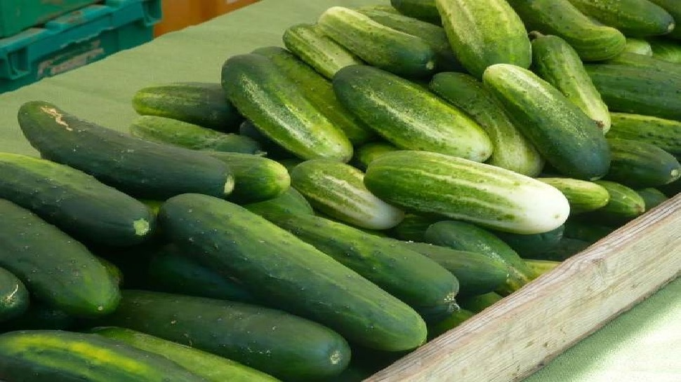 Identify Whether Cucumber Is Bitter or Sweet in These Ways, Bitterness Will Also Burst Away From It
