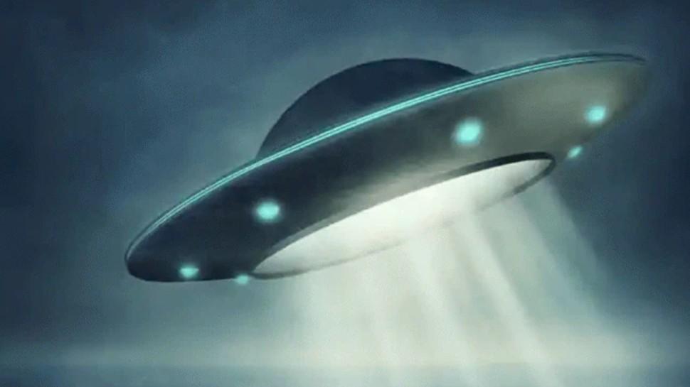 Alien on Earth