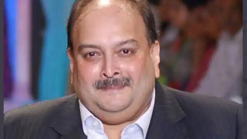 Mehul Choksi केस में फिर नहीं हुआ फैसला, डोमिनिका कोर्ट में टली सुनवाई
