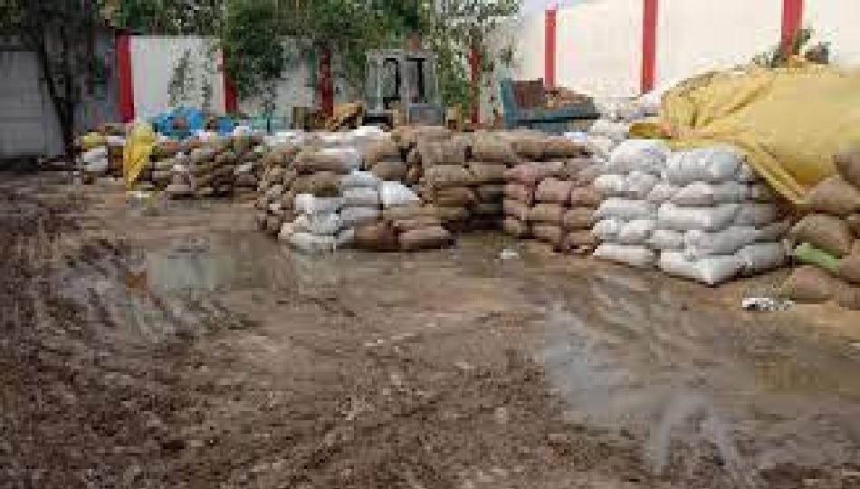 FCI-रेलवे की भेंट चढ़ा सैकड़ों क्विंटल अनाज, विभाग ने मामूली नुकसान कहकर झाड़ा पल्ला
