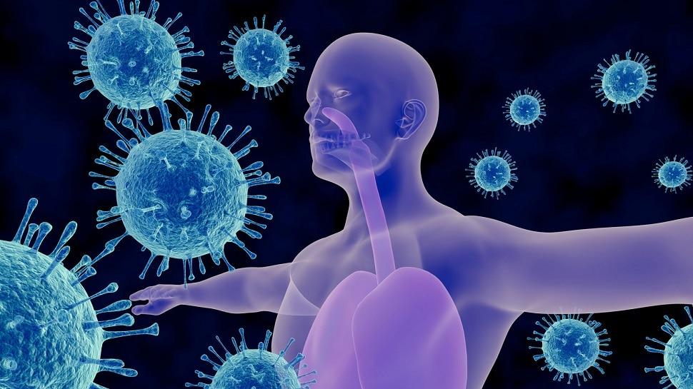three types of immunity know the strongest type immunity boosting tips samp    3 Types of Immunity: तीन तरह की होती है इम्यूनिटी, जानें कौन-सा प्रकार है  सबसे ताकतवर   Hindi News, सेहत
