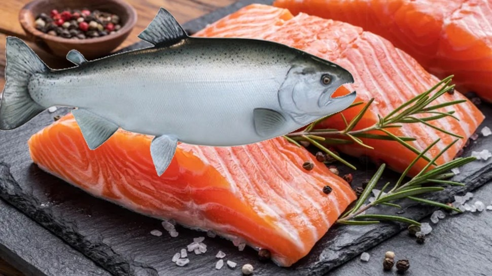 इस मछली को खाने से मिलते हैं जरबदस्त फायदे, कैंसर, दिल समते इन बीमारियों का खतरा होगा कम, शरीर बनेगा ताकतवर