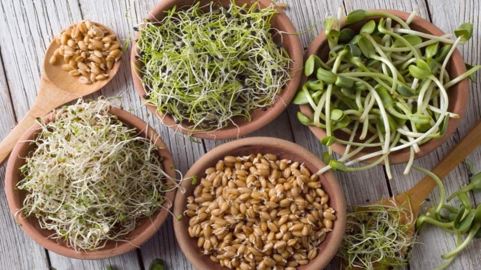 amazing benefit of sprouts for men health heart immunity anti cancer ngmp   हेल्दी और ताकतवर रहना है तो जरूर खाएं अंकुरित अनाज, पोषण की नहीं होगी शरीर में कमी