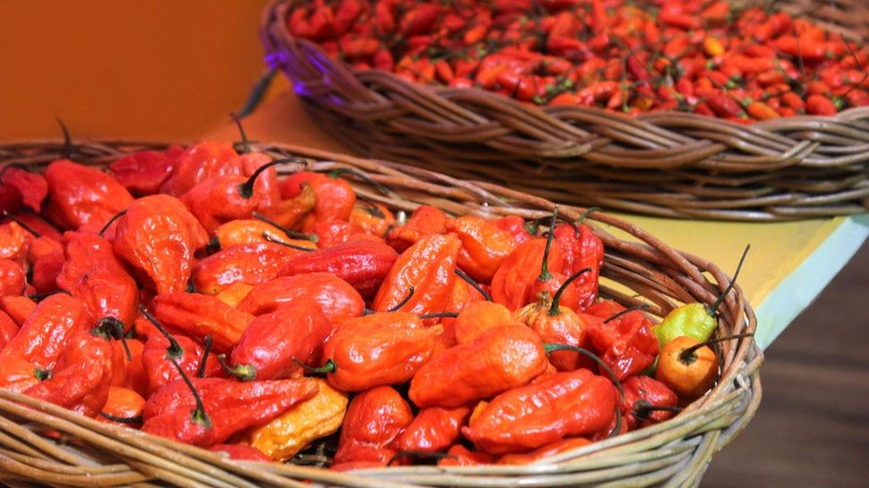 Nagaland ने दुनिया की सबसे तीखी मिर्च 'King Chilli' का पहली बार UK को किया निर्यात