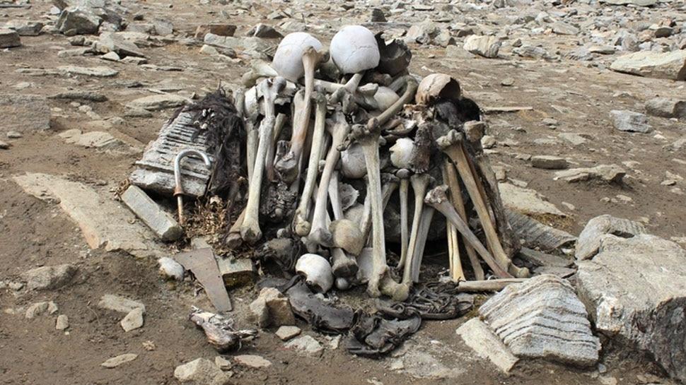 Skull fractures of most skeletons