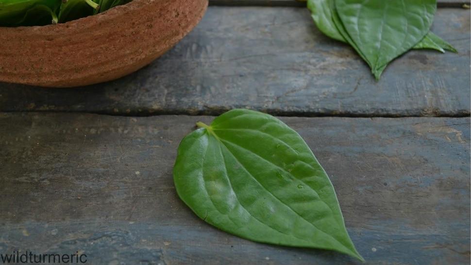 betel leaf will fail tantra mantra