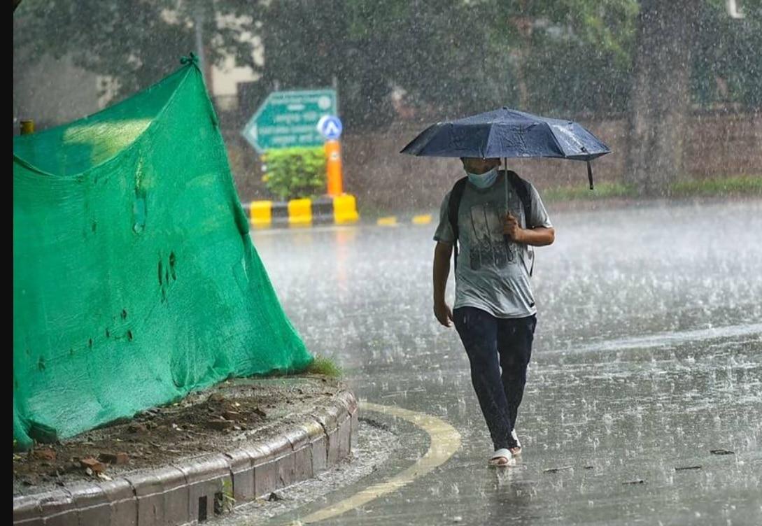 Weather, Monsoon Update: दिल्ली-एनसीआर में बारिश, जानिए 24 घंटे कैसा रहेगा मौसम
