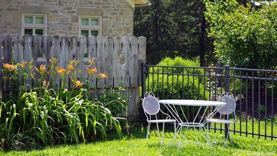 महिला को Garden में हर रोज मिलता था कुछ अजीब, Camera लगाया तो सामने आई पड़ोसी की चौंकाने वाली हरकत