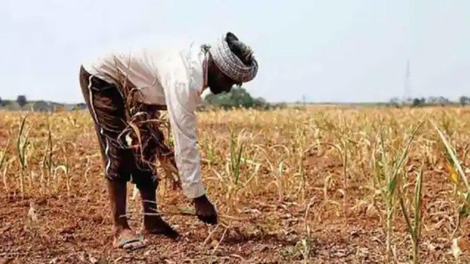 छत्तीसगढ़ः करोड़ों की सरकारी योजनाएं फेल, आदिवासी किसान बोले- उनके साथ हुआ बड़ा मजाक