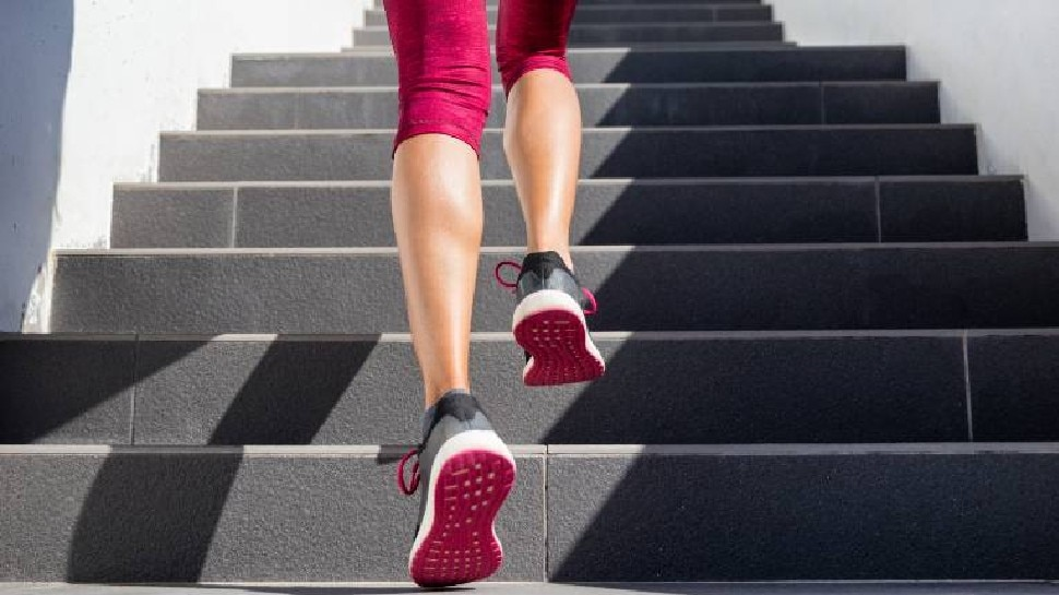 रोज सीढ़ियां चढ़ने से सेहत के लिए मिलते हैं जरबदस्त लाभ, कुछ ही हफ्तों में वजन हो जाएगा कम, बस ध्यान रखें ये बातें