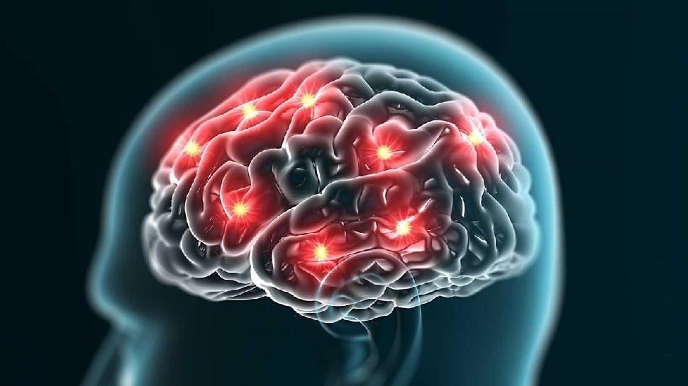 brain boosting food These 5 things increase your memory and your brain also starts running faster brmp   brain boosting food: ये 5 चीजें बढ़ा देती हैं आपकी याददाश्त, दिमाग भी चलने लगता है तेज, जानिए