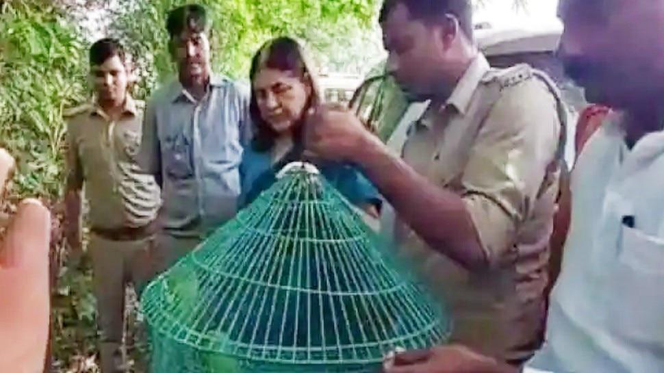 पिंजरे में कैद Parrots पर पड़ी मेनका गांधी की नजर, गाड़ी रुकवाई और कर दिया आजाद