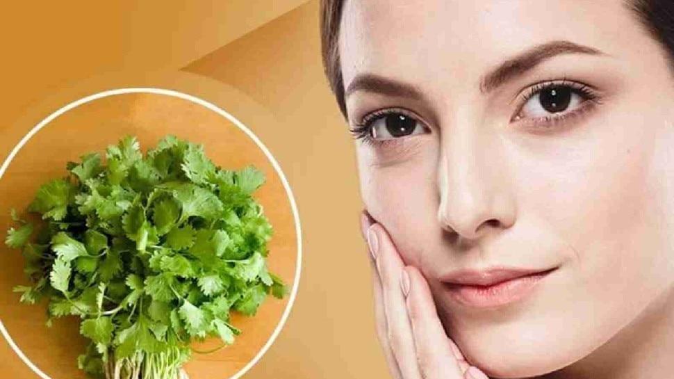 Glowing Skin tips: स्किन की ये समस्याएं दूर करेगी हरी धनिया, इस तरह करें उपयोग, खिले उठेगा आपका चेहरा