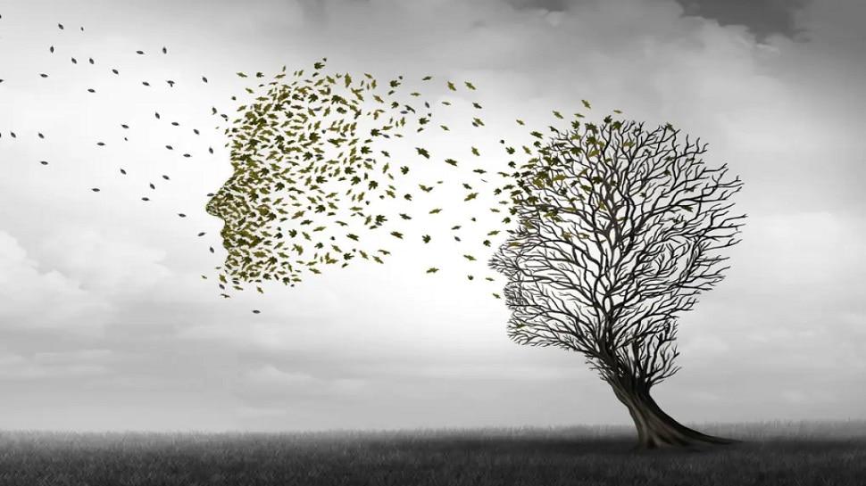 Alzheimer's Disease: इस लाइलाज बीमारी की शुरुआत में मिलने लगते हैं ये संकेत, तुरंत उठाएं ये कदम