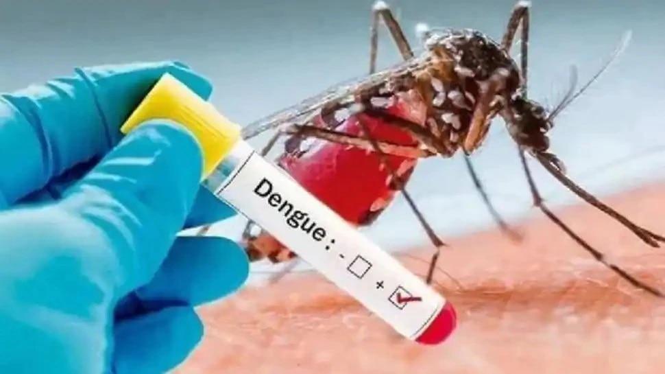 मेरठ में डेंगू का कहर: बढ़ रहे हैं एक्टिव केस, स्वास्थ्य विभाग ने की लोगों से ये अपील