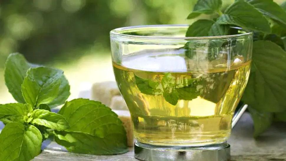 Green Tea: एक दिन में इतने कप ही पीनी चाहिए ग्रीन टी, वर्ना होगा नुकसान; जानिए पीने का सही समय और तरीका