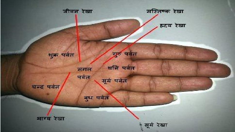 Palmistry: ये रेखाएं पूरा करती हैं विदेश जाने का सपना, अपने हाथ में चेक करें है या नहीं