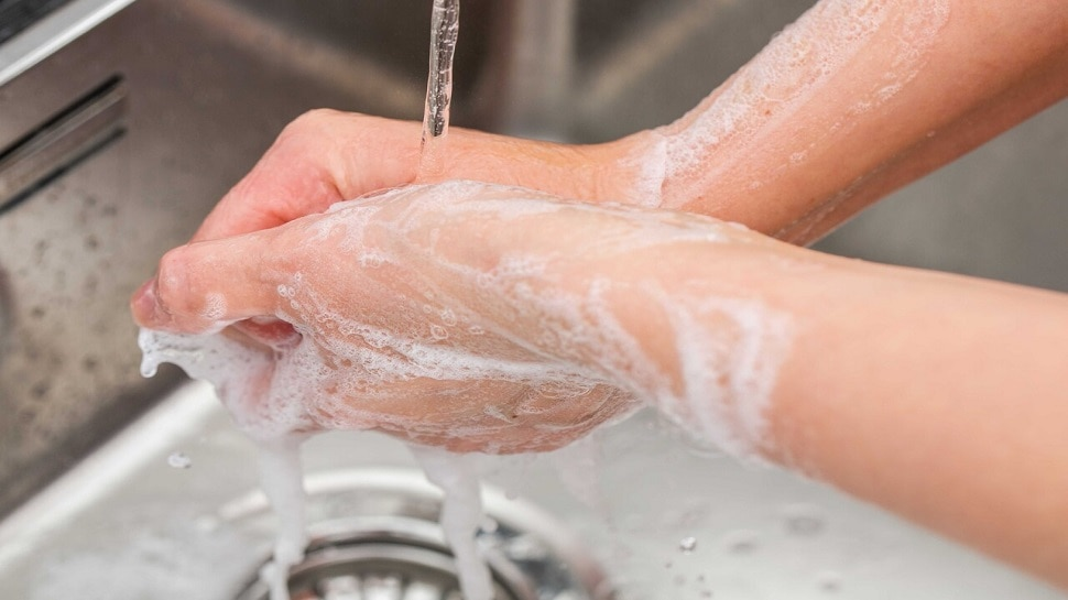 Global Handwashing Day: इस वक्त जरूर धोने चाहिए हाथ, दूर रहेंगी बीमारियां, जानें सही तरीका