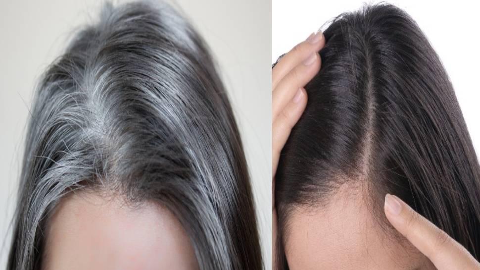 Black Hair Shampoo: घर पर 5 मिनट में बनाएं ये शैंपू, सफेद बालों को जड़ से बना देगा काला