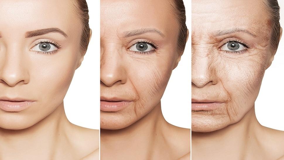 Anti-Aging Foods: रोजाना खाएं ये 5 जबरदस्त फूड, चेहरे पर कभी नहीं दिखेगा बुढ़ापा, ग्लो रहेगा बरकरार