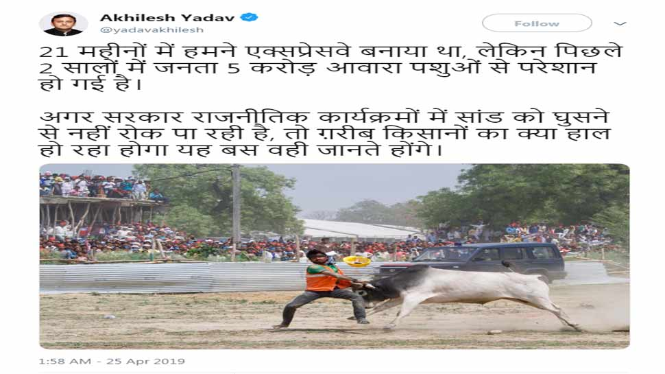 akhilesh yadav tweet and target BJP Government after stray bull created ruckus in Kannauj Rally