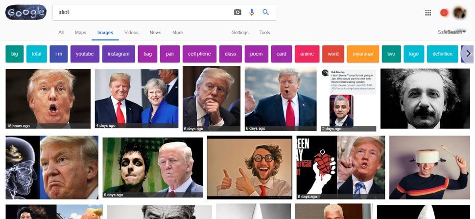 डोनाल्ड ट्रंप, Idiot, Google image search, Results for Idiot, Albert Einstein, Trump