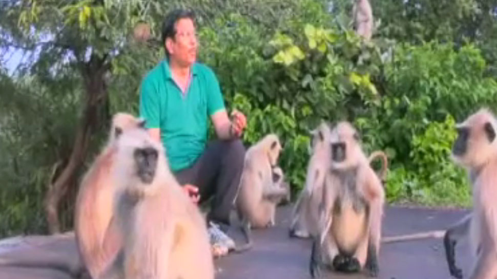 Madhya Pradesh: Monkey and this man's Friendship is unmatched, never live apart