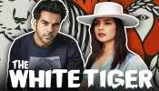 Priyanka Chopra की फिल्म 'The White Tiger' की रिलीज पर बैन की मांग पर कोर्ट का इनकार