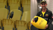 जानिए क्यों Glenn Maxwell के छक्के से टूटी हुई कुर्सी होगी नीलाम? बेहद खास है वजह