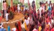 Sitapur: दूल्हा बना 'आम' और 'इमली' दुल्हनिया, इस अनोखी शादी के लिए छपे वेडिंग कार्ड