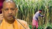चुनावी साल में यूपी के किसानों के लिए खुशखबरी, योगी सरकार ने 25 रुपए बढ़ाया गन्ने का रेट