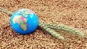 Global Food Security index 2021: खाद्य सुरक्षा में इन गरीब और लाचार मुल्कों से भी पीछे है अपना देश