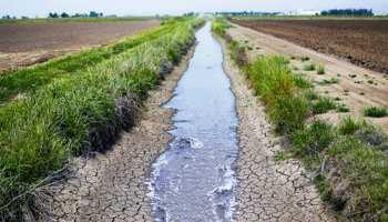 राजस्थान में भूजल विकास की स्थिति हुई खराब, डार्क जोन में नागौर जिला