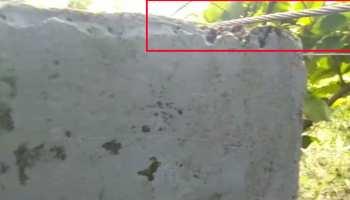 बलरामपुर: स्कूल की इमारत पर गिरा हाईटेंशन तार, 52 बच्चे घायल, CM योगी ने लिया संज्ञान