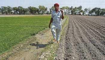 राजस्थान में किसान ऋण वितरण में पकड़ी रफ्तार, 6 लाख किसानों ने किया आवेदन
