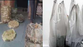जयपुर: इस गांव ने पर्यावरण के लिए की पहल, सिंगल यूज प्लास्टिक किया बैन