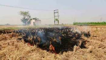 UP: पराली जलाने वाले 10 किसानों के खिलाफ दर्ज हुई FIR, लगा 35 हजार का जुर्माना