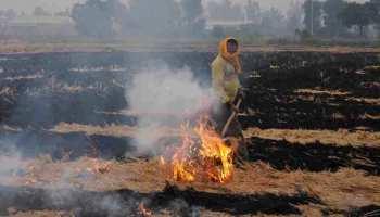 मथुरा: पराली जलाने वाले 250 किसानों को जारी हुआ नोटिस, भरना पड़ेगा जुर्माना