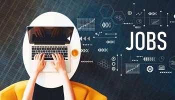 Tech Jobs के लिए बेहतरीन हैं ये जॉब प्लेटफॉर्म, Job Search में मिलेगी मदद