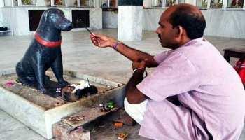 इस मंदिर में की जाती है काले कुत्ते की पूजा, जानिए ऐसी ही हैरान कर देने वाली बातें