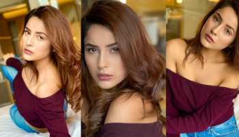 shehnaaz gill got her latest photoshoot photos viral on social media