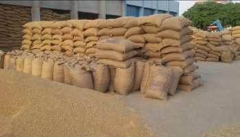 Corona काल में 1 लाख किसान हुए लाभान्वित, 10.5 लाख मैट्रिक टन गेहूं की खरीद