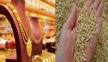 Akshaya Tritiya 2021: अक्षय तृतीया पर सोना खरीदना जरूरी नहीं, शगुन के लिए अपनाएं ये उपाय