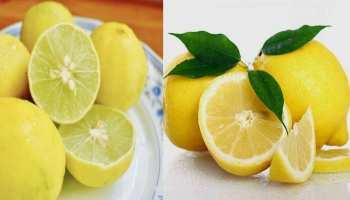 Benefits of lemon: रोज 1 नींबू से शरीर में दिखेंगे गजब के बदलाव, जान लीजिए जबरदस्त फायदे और सेवन का तरीका