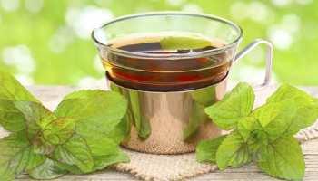 Sulaimani Tea: डार्क सर्किल्स को दूर करने में सबसे असरदार है ये चाय, जानें बनाने का आसान तरीका