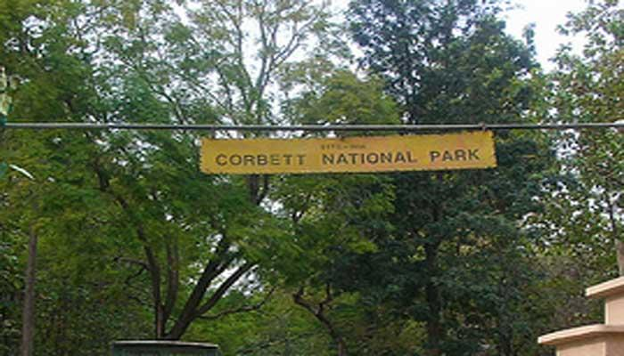कार्बेट से गायब हुए वनकर्मी का पता नहीं, प्रदर्शनकारियों ने पर्यटकों को रोका