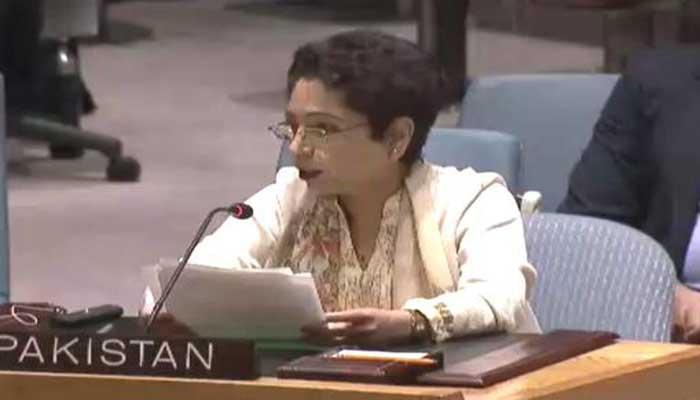 एनएसए बैठक से पहले यूएन में फिर पाक का कश्मीर राग