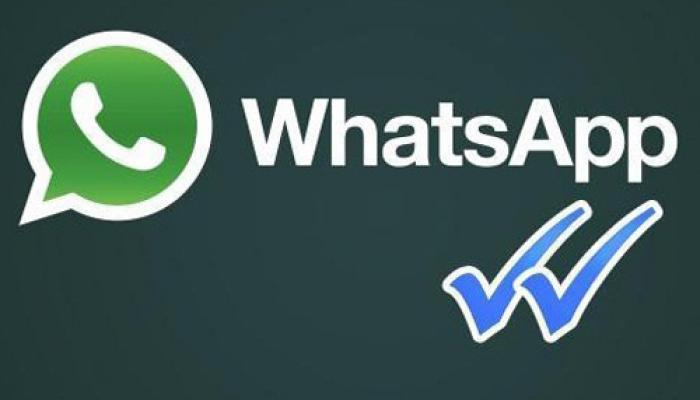 खुशखबरी! WhatsApp में नया अपडेट, ग्रुप चैट में 256 लोगों को अब कर सकते हैं ऐड
